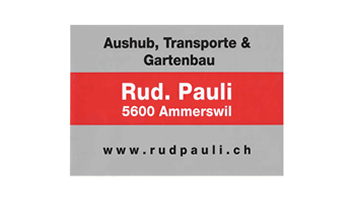 Pauli Aushub